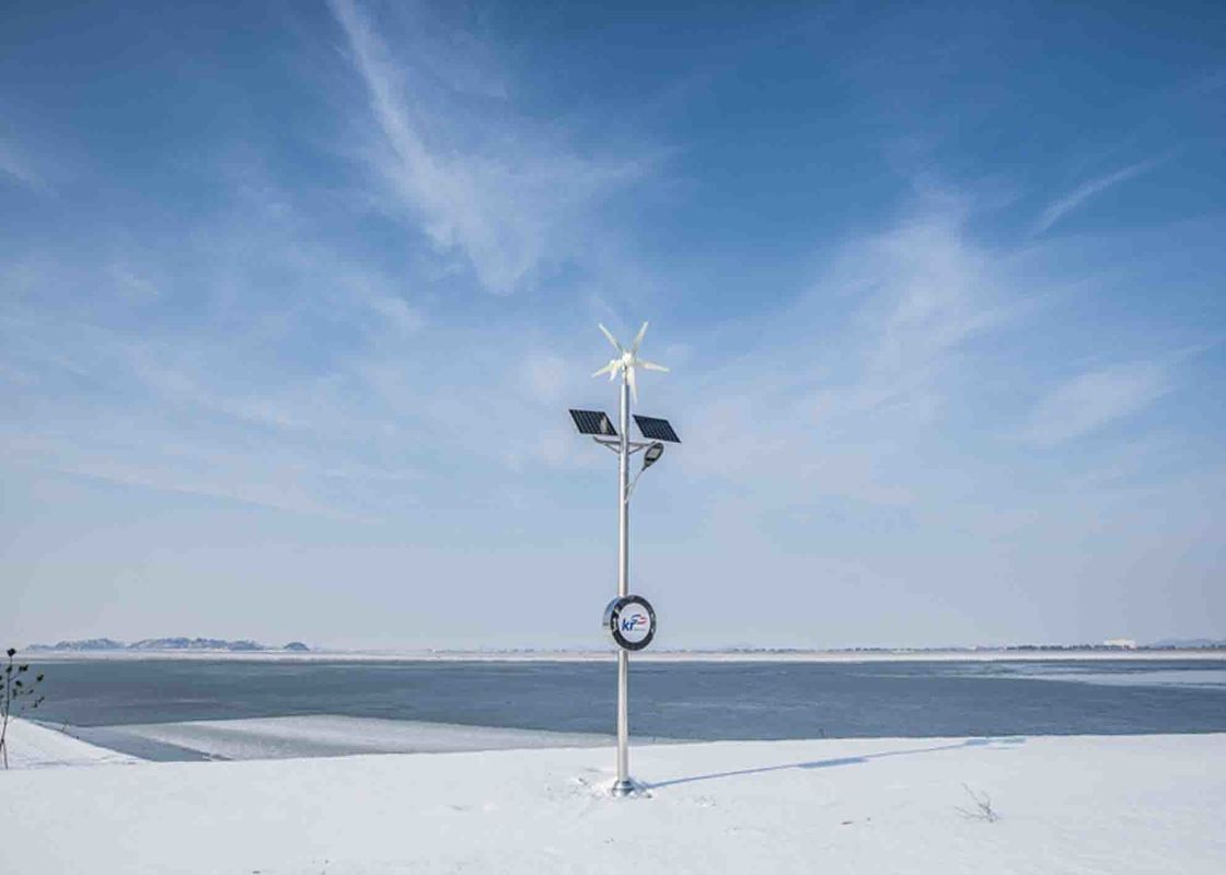 1500W 48V Horizontal Wind Turbine For Home Use Electricity With 5 Blade